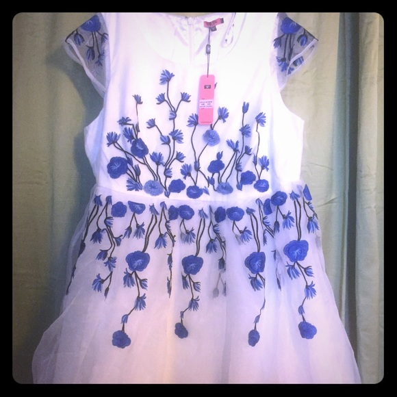 e3fc5b9e8572 Modcloth Dresses | Nwt 22 Chichis Of London Embroidered Floral Dress ...